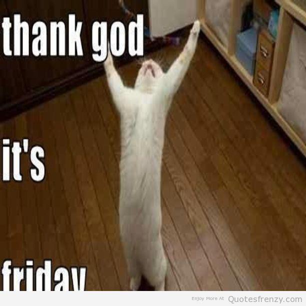 cat-kitty-text-tgif-Friday-weekend-fun-freedom-funny-lol ...