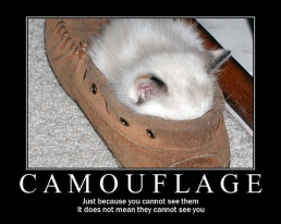 Camouflage-motivational-poster