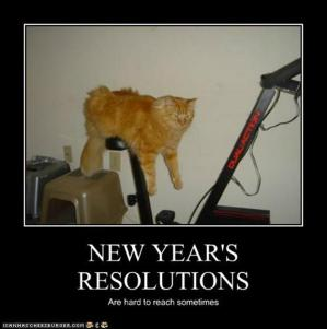 Funny-new-years-resolutions-demotivational-posters