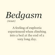 Now that's funny!   Good night quotes, Sleep quotes, Cool words